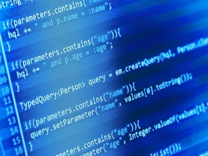 Programming & Database Development